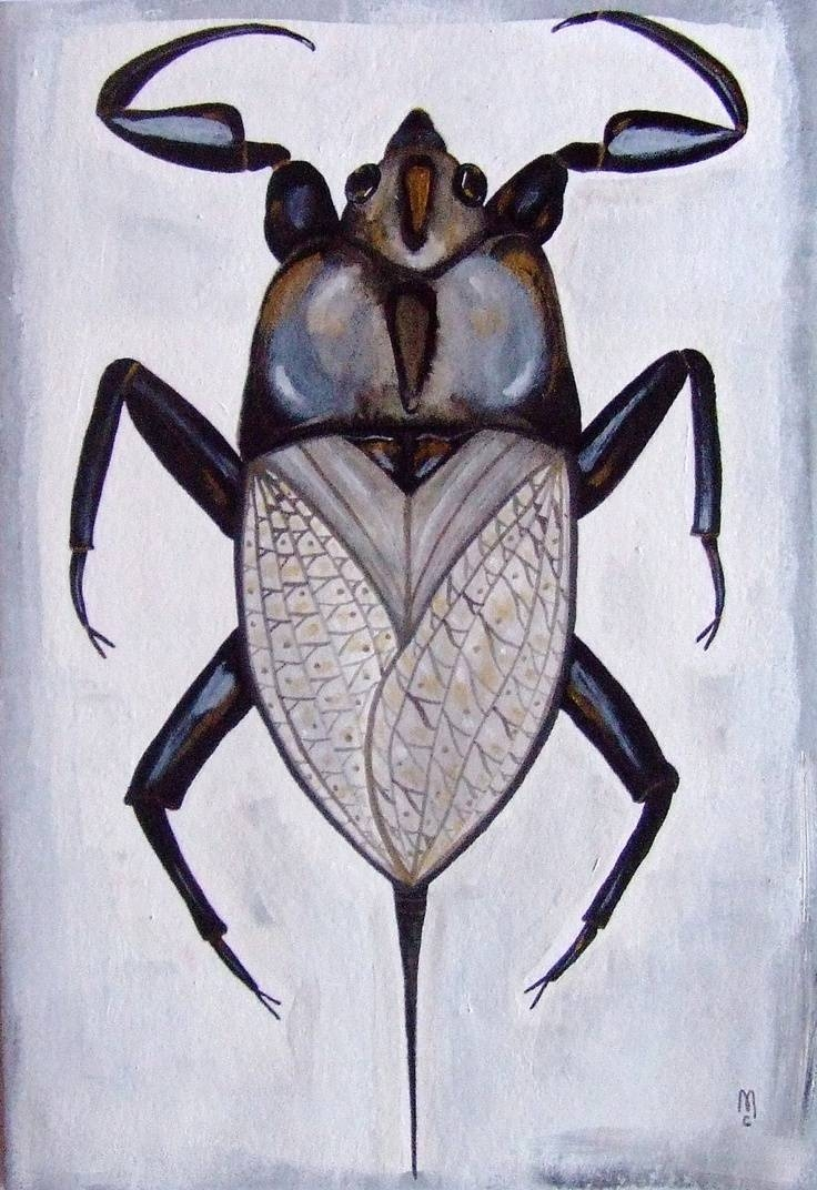 34 Best Insect Art Images On Pinterest | Insect Art, Watercolors For Newest Insect Wall Art (View 1 of 30)