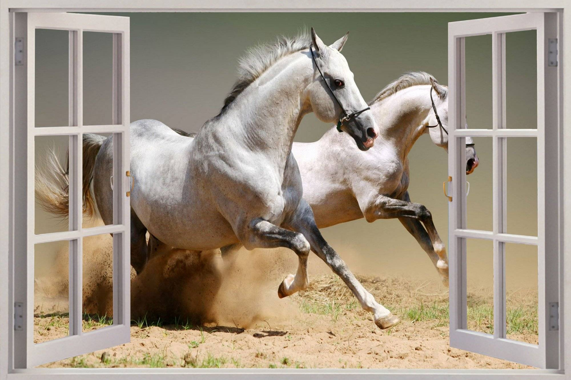 3D Horse Wall Art | Wallartideas With Regard To Most Current 3D Horse Wall Art (Gallery 2 of 20)