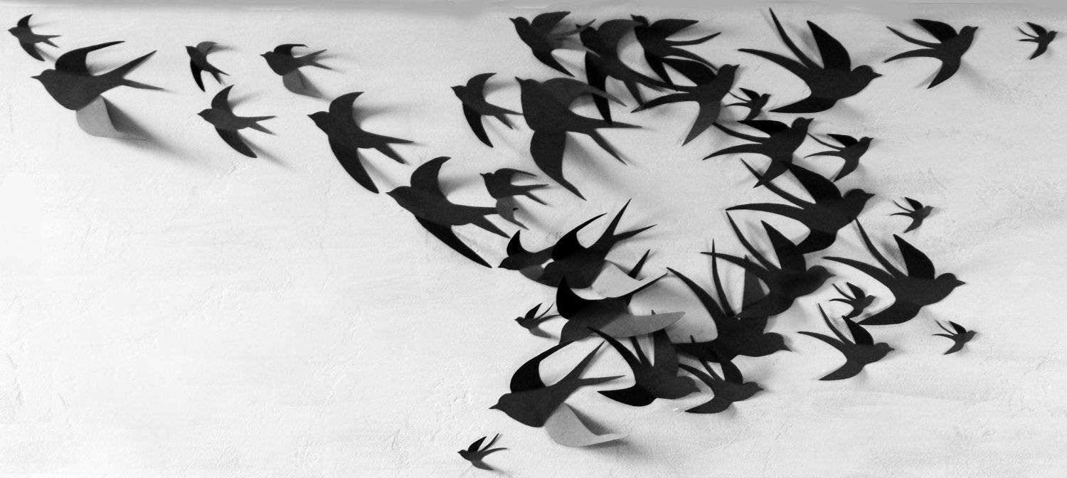 50 3D Bird Wall Art Circle Burst Intended For Latest 3D Wall Art Etsy (View 8 of 20)