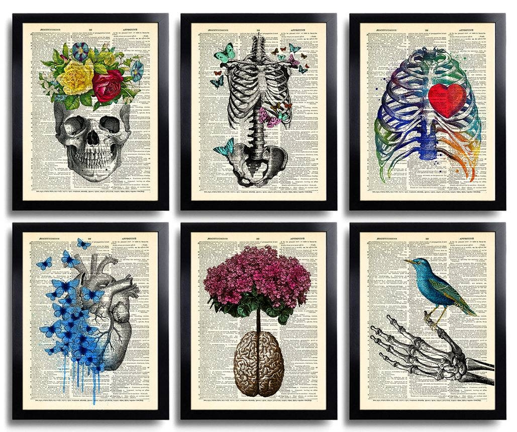 Anatomy Art Print Set 6 Medical Wall Art Anatomical Poster Intended For 2018 Medical Wall Art (View 16 of 20)