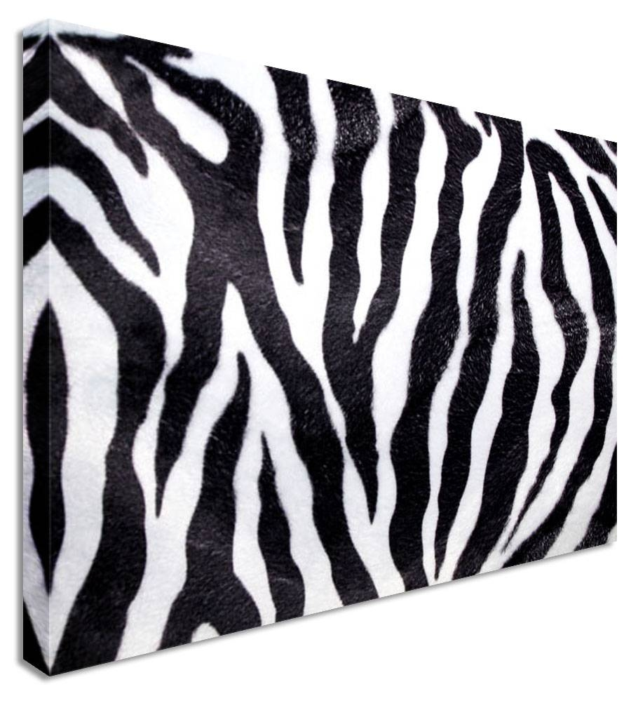 Animal Print Canvas Wall Art – Wall Murals Ideas Throughout Most Current Zebra Wall Art Canvas (View 4 of 25)