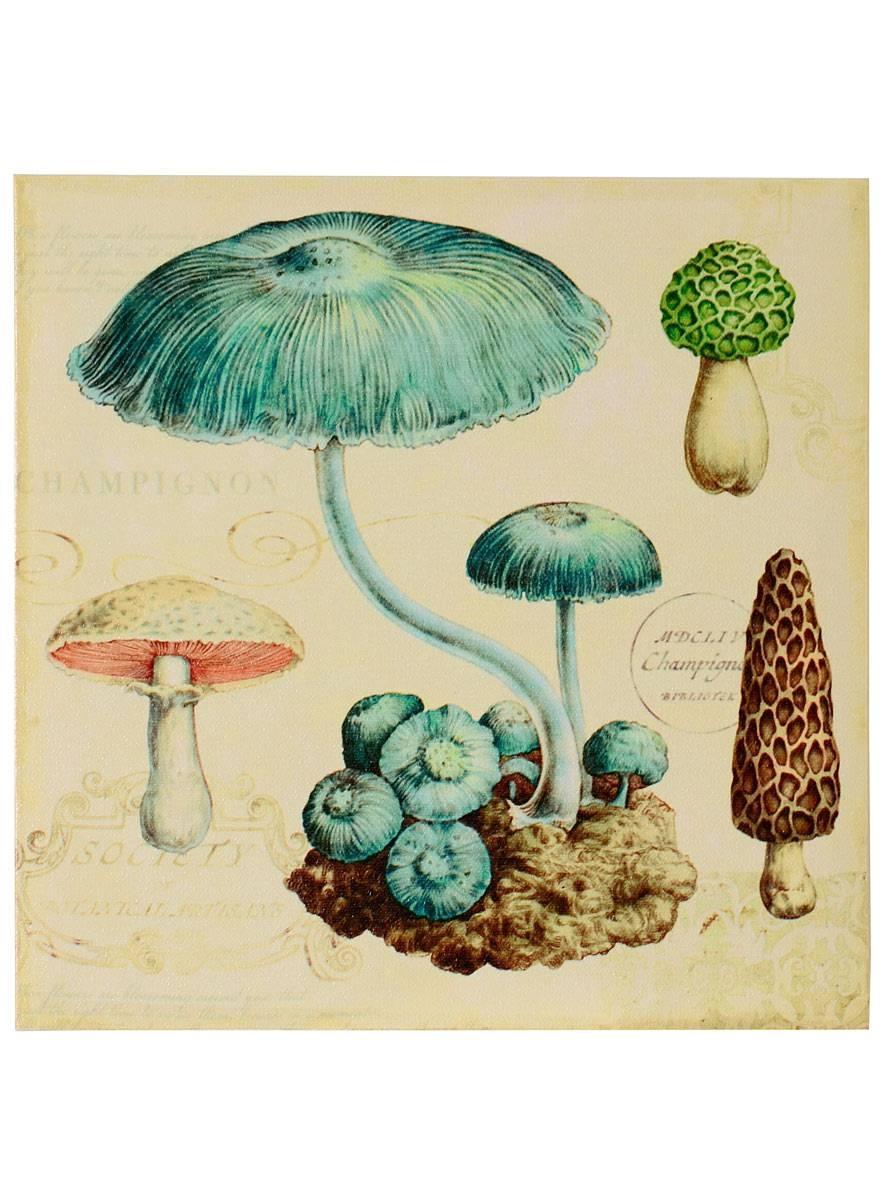 Apothic Mushroom Canvas Wall Art #1creative Co Op | Wall Art Inside Most Current Mushroom Wall Art (View 3 of 20)