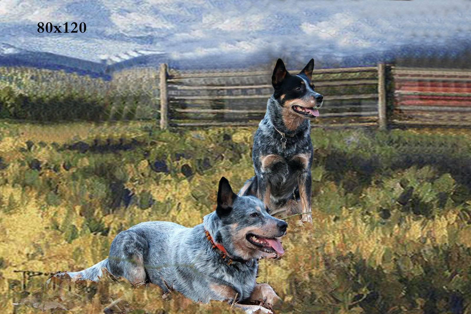 Bar Sign | Bar Decorations | Western Country Sign In Most Popular Dogs 3d Wall Art (View 16 of 20)