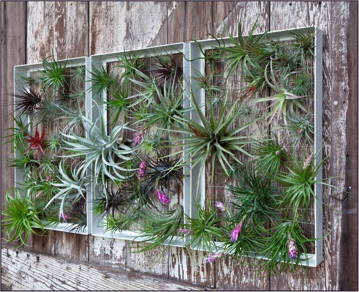 Beautify Your Patio With Garden Wall Art Ideas – Youtube For Most Popular Garden Wall Art (View 1 of 30)