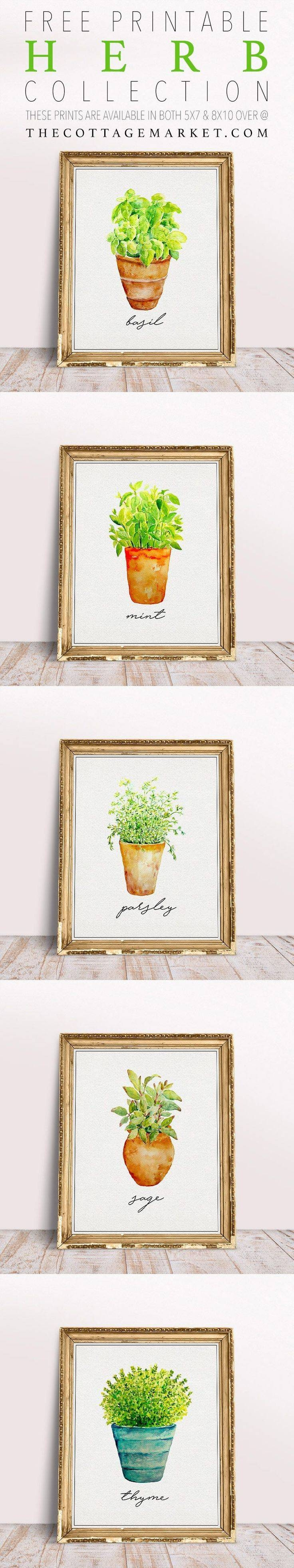 Best 25+ Kitchen Wall Art Ideas On Pinterest | Kitchen Prints In Current Art Prints To Hang On Your Wall (View 3 of 15)