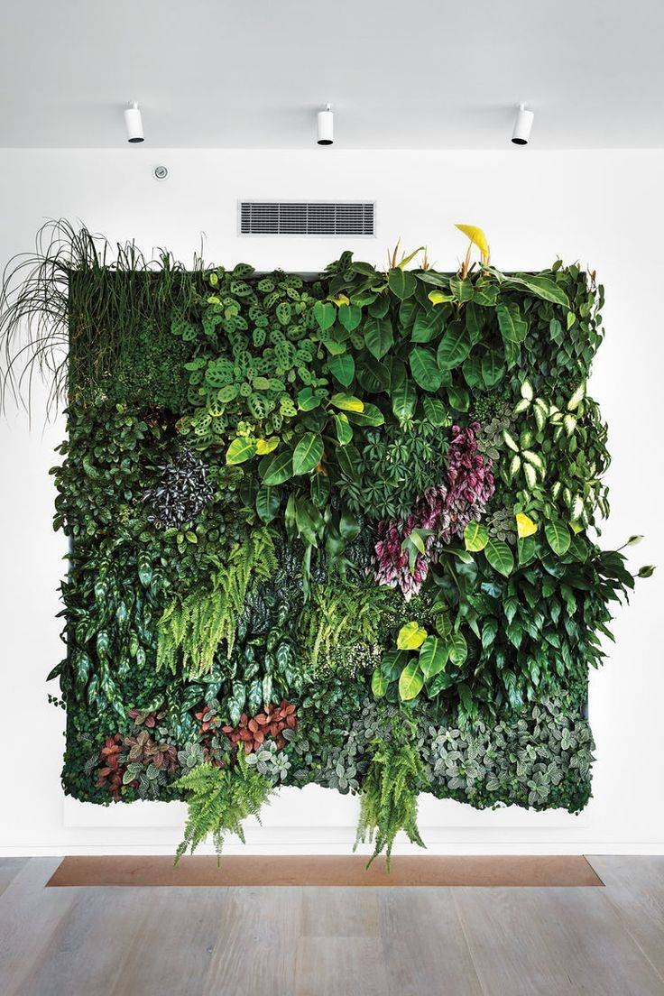 Best 25+ Plant Wall Ideas On Pinterest   Living Room Wall Art For Best And Newest Diy Garden Wall Art (View 6 of 25)