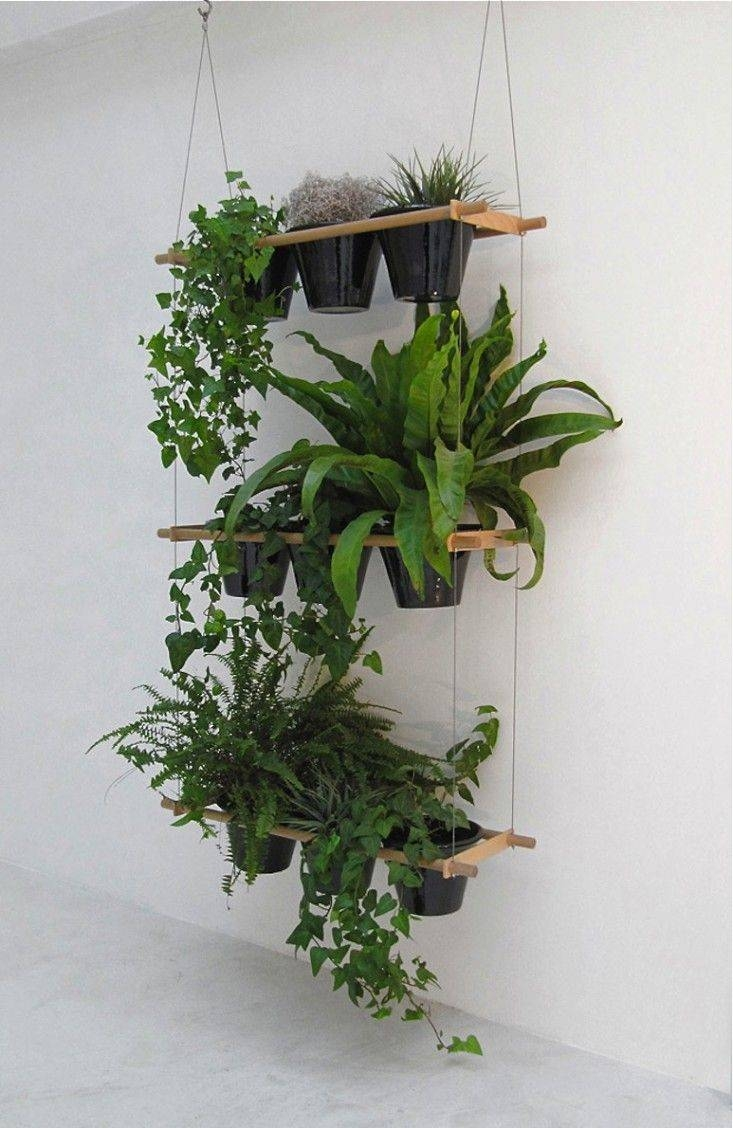 Best 25+ Plant Wall Ideas On Pinterest   Living Room Wall Art Inside Most Recently Released Floral & Plant Wall Art (View 11 of 25)