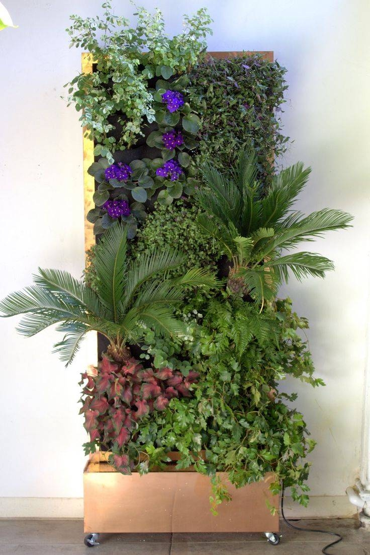 Best 25+ Vertical Planting Ideas On Pinterest | Garden Ideas With Throughout Most Current Floral & Plant Wall Art (View 15 of 25)