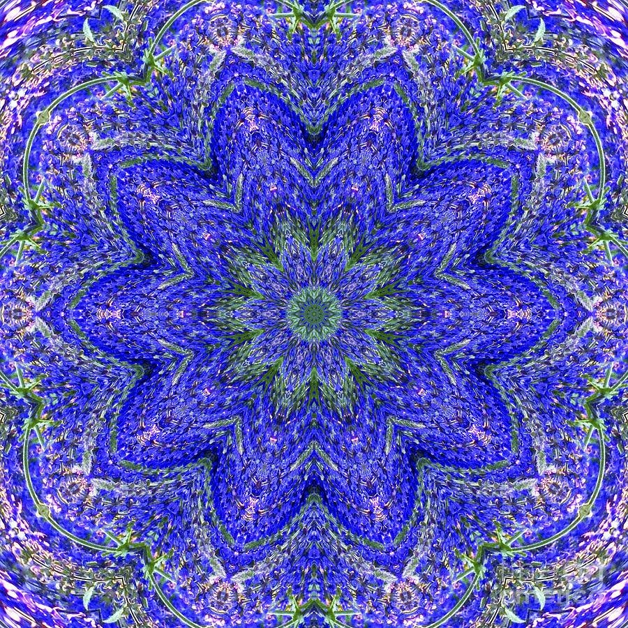 Blue Purple Lavender Floral Kaleidoscope Wall Art Print Photograph Within Newest Kaleidoscope Wall Art (View 9 of 20)