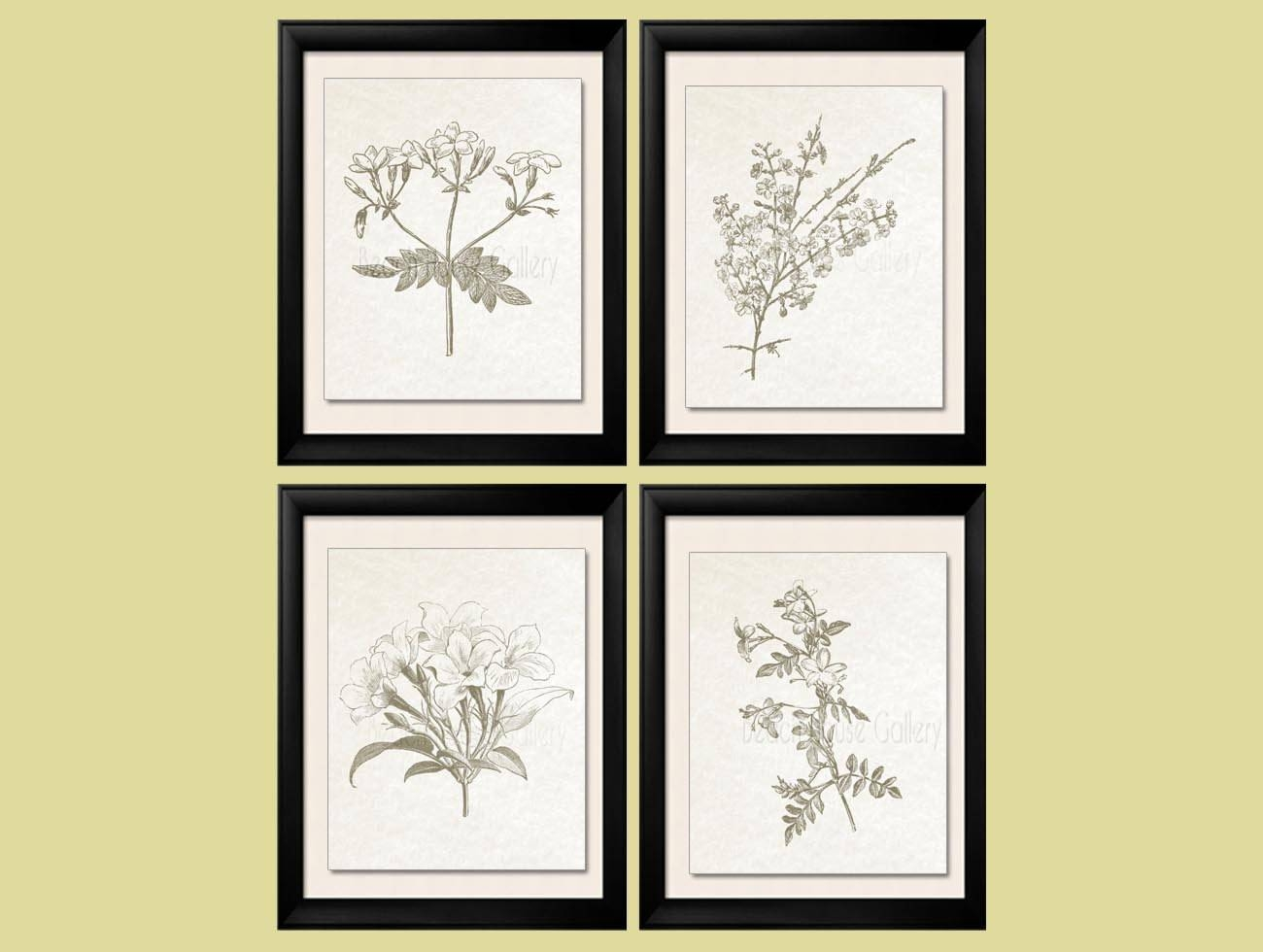 Botanical Prints Sepia Brown Botanical Botanical Plates With Regard To Most Up To Date Botanical Prints Etsy (View 11 of 20)