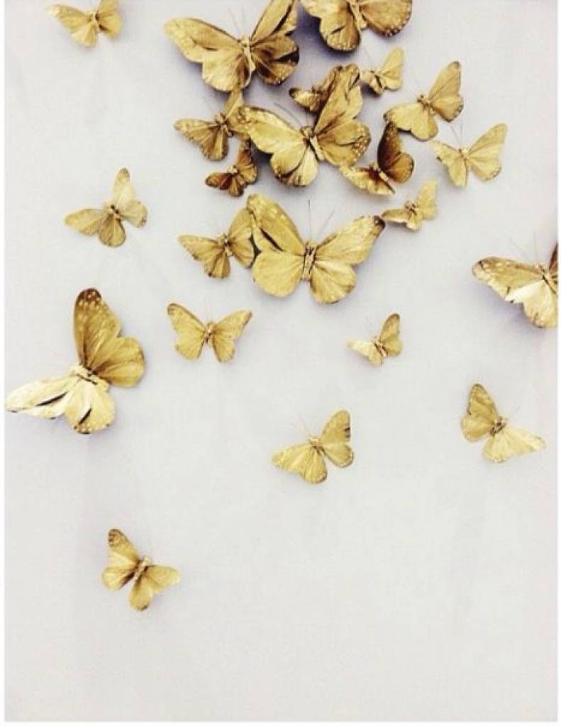Butterflies On Pinterest | Paper Butterflies, Butterfly Art And Pertaining To Recent Ceramic Butterfly Wall Art (View 6 of 30)