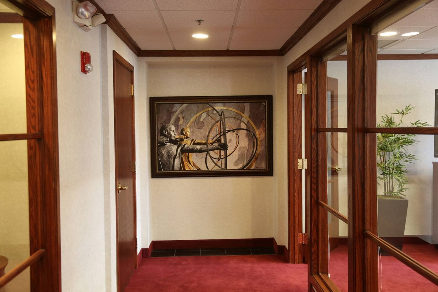 Commercial Installation – Fine Art Photography With Most Recent Commercial Wall Art (View 18 of 20)