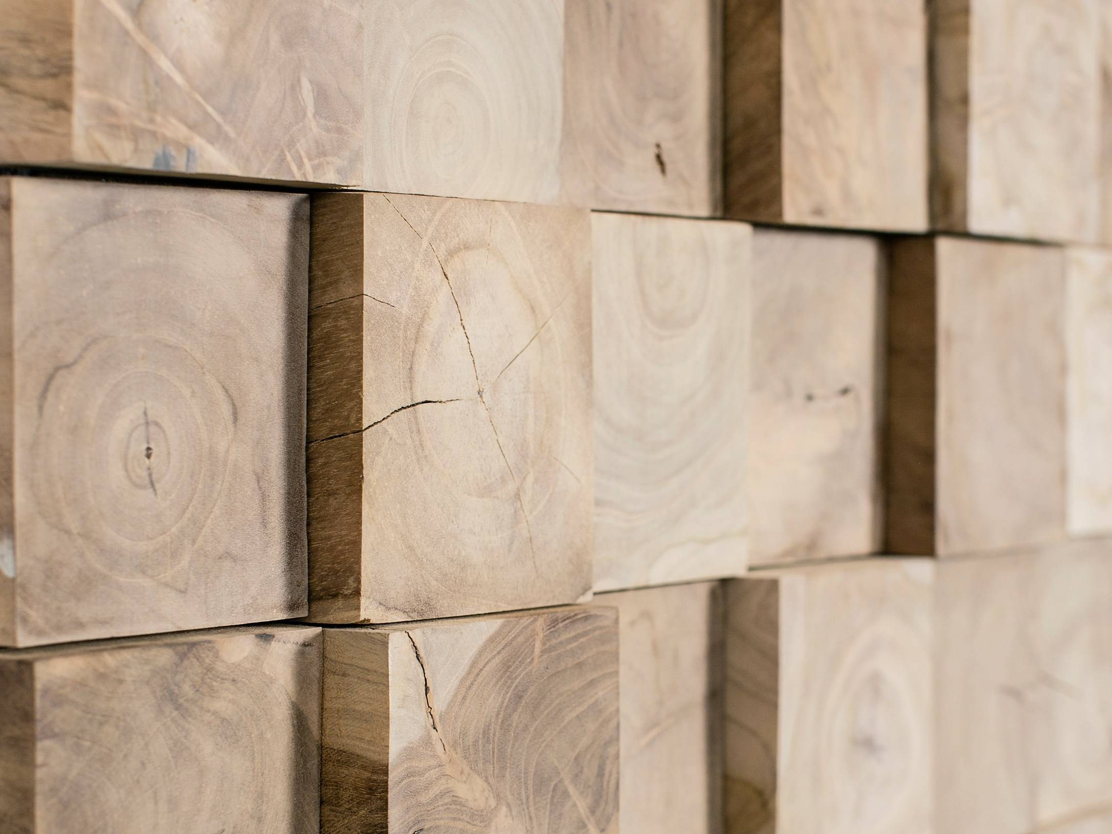 Decorating Decorative Wall Paneling Featured Rockwool Fire Within Most Recent Wood 3D Wall Art (View 1 of 20)