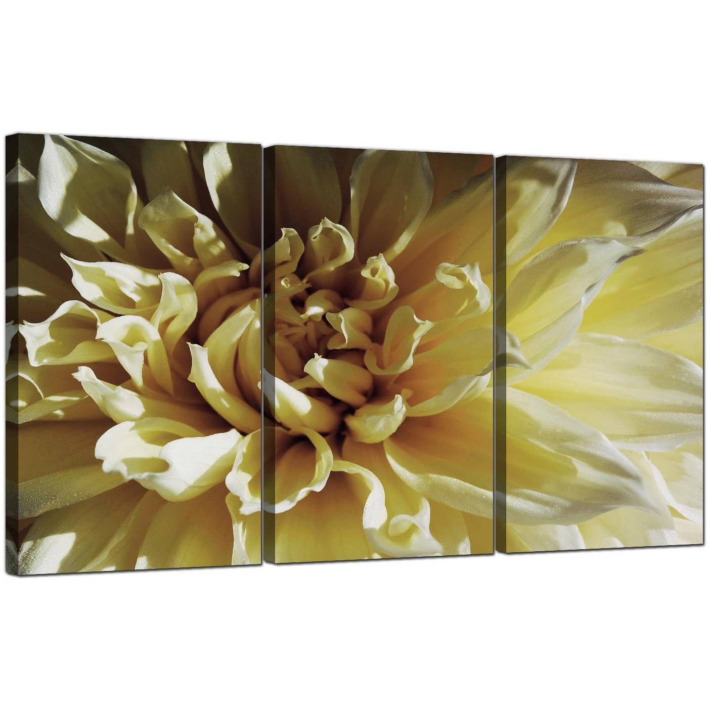 Flower Canvas Art Set Of 3 For Your Living Room With Most Up To Date Canvas Wall Art Sets Of (View 25 of 25)