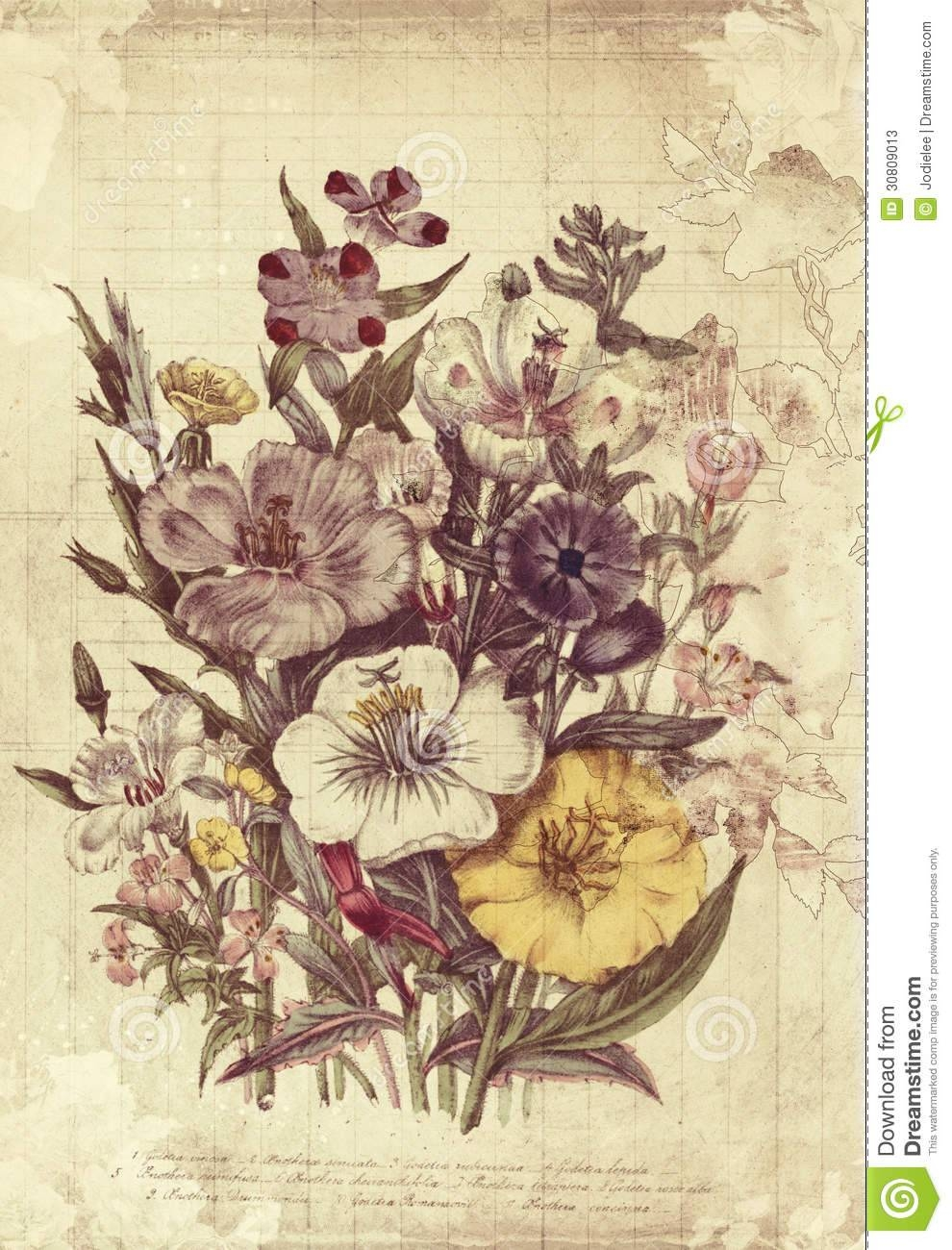 Flowers Botanical Vintage Style Wall Art With Textured Background Regarding Most Recently Released Vintage Style Wall Art (View 2 of 20)