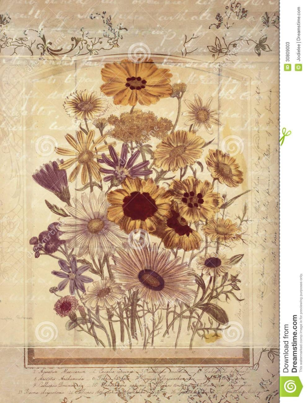 Flowers Botanical Vintage Style Wall Art With Textured Background Throughout Most Current Vintage Style Wall Art (View 3 of 20)