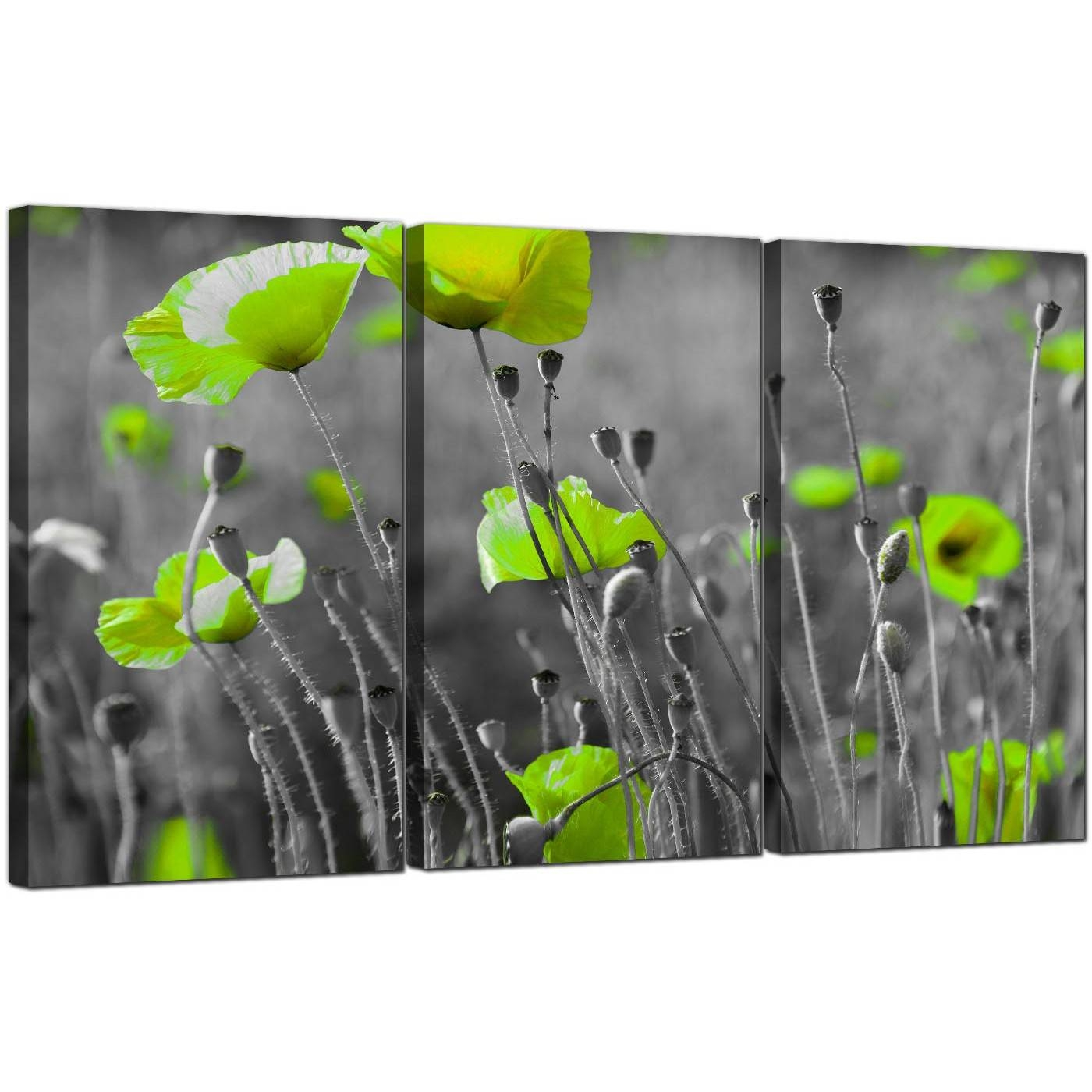 Green Poppy Canvas Wall Art 3 Part For Your Living Room Within 2018 Lime Green Wall Art (View 1 of 20)