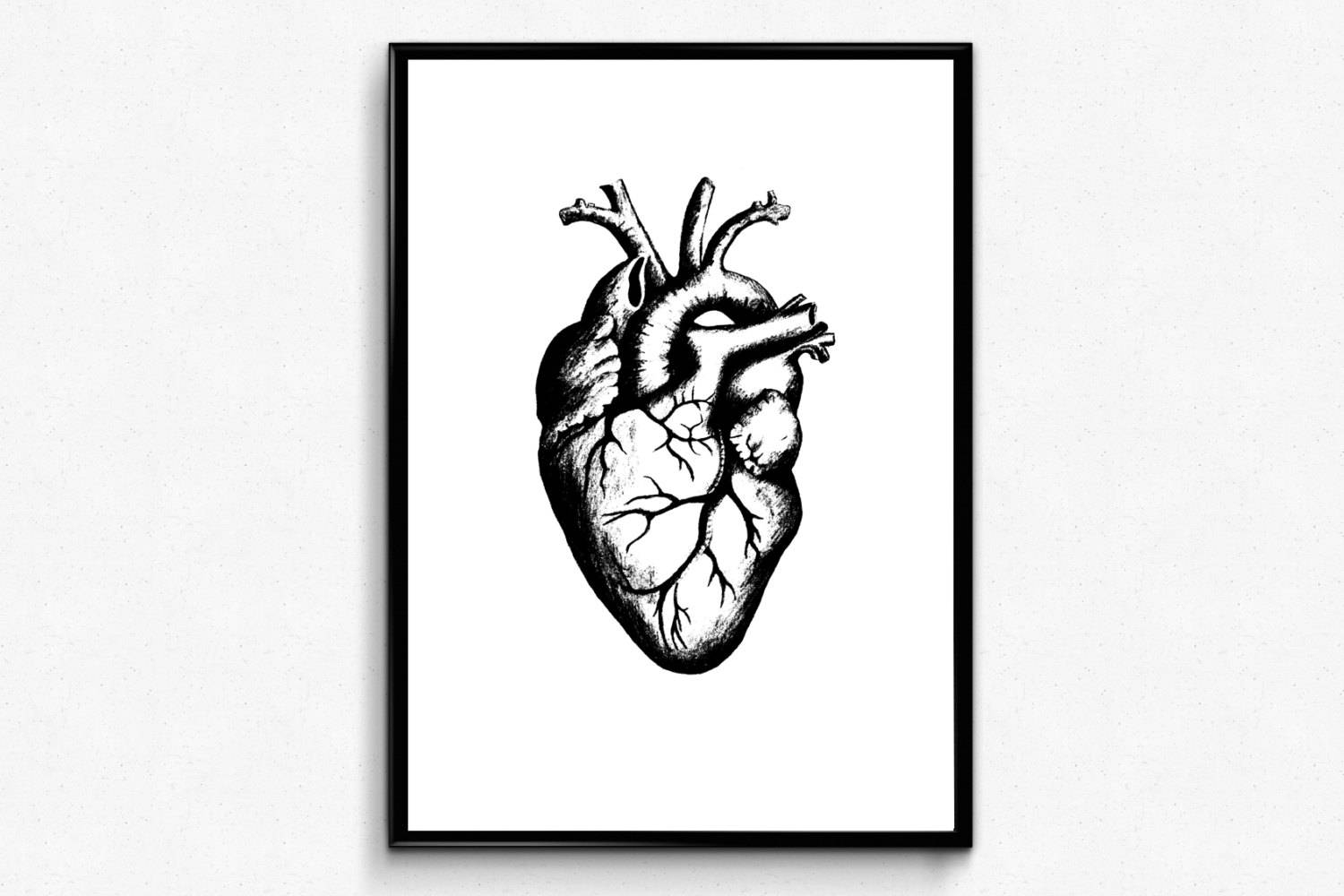 Heart Anatomy Print Anatomical Heart Art Geek Love Anatomy With Regard To Most Recently Released Medical Wall Art (View 11 of 20)