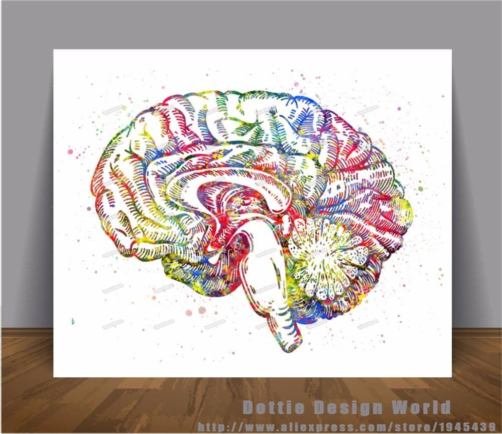 Human Brain Anatomy Print Watercolor Canvas Painting Medical Wall Pertaining To Best And Newest Medical Wall Art (View 13 of 20)