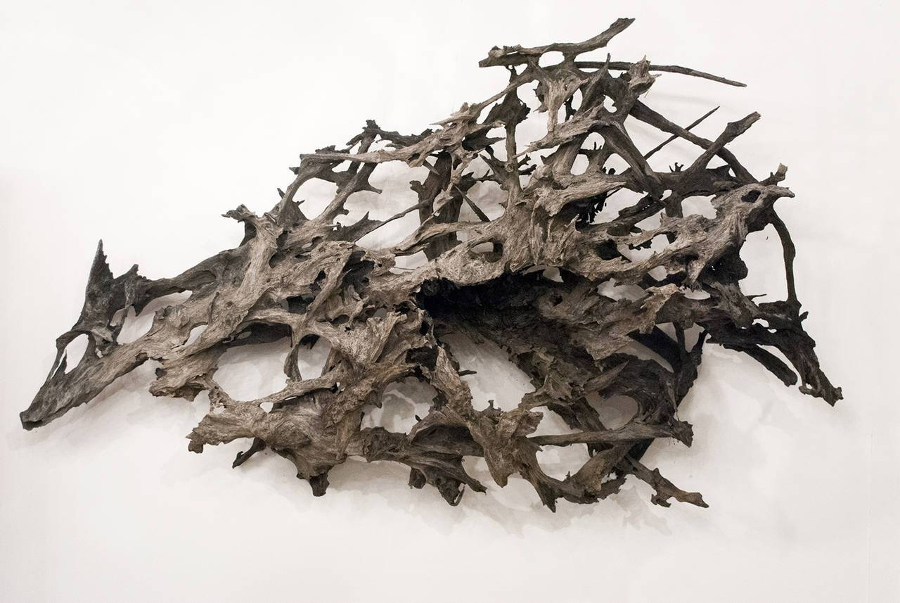 Large Driftwood Wall Sculpture At 1stdibs With Most Recent Large Driftwood Wall Art (View 5 of 30)