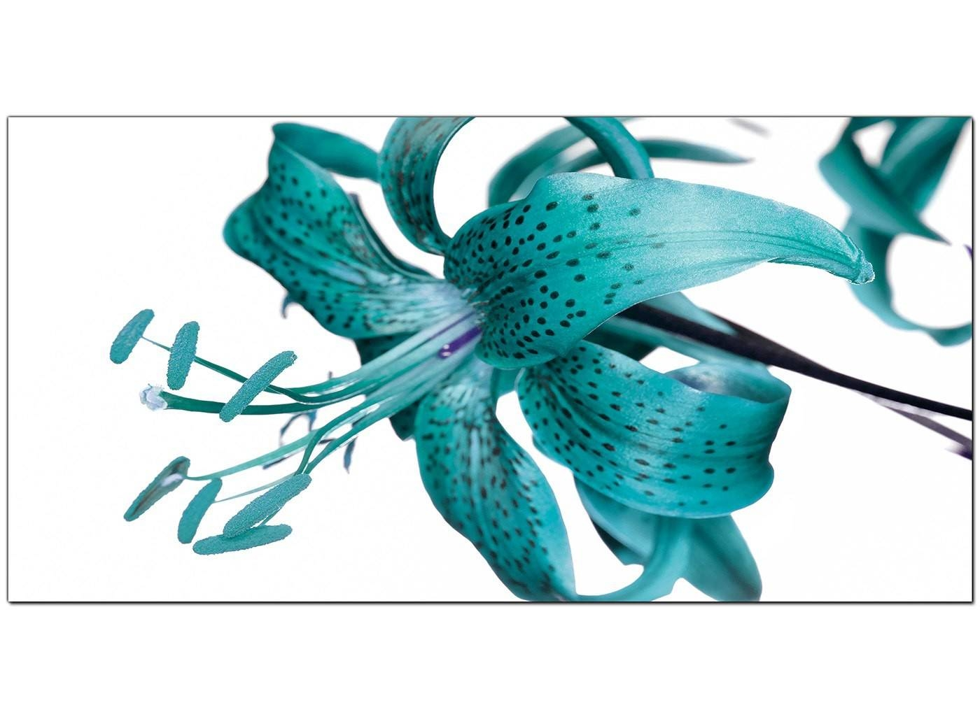 Large Teal Canvas Prints Of A Tiger Lily Flower Within 2017 Teal Flower Canvas Wall Art (View 10 of 20)