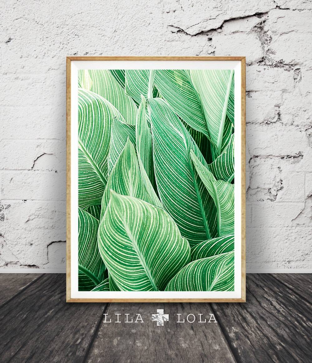 Leaf Wall Art Print Tropical Plant Photo Printable Large Pertaining To Recent Large Green Wall Art (View 13 of 20)