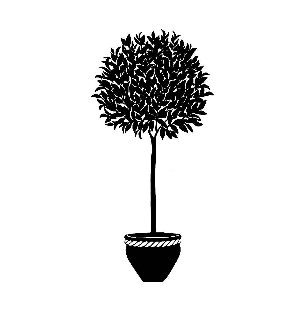 Metal Wall Art Bay Tree Topiary Silhouette Pertaining To Most Recent Topiary Wall Art (View 15 of 30)