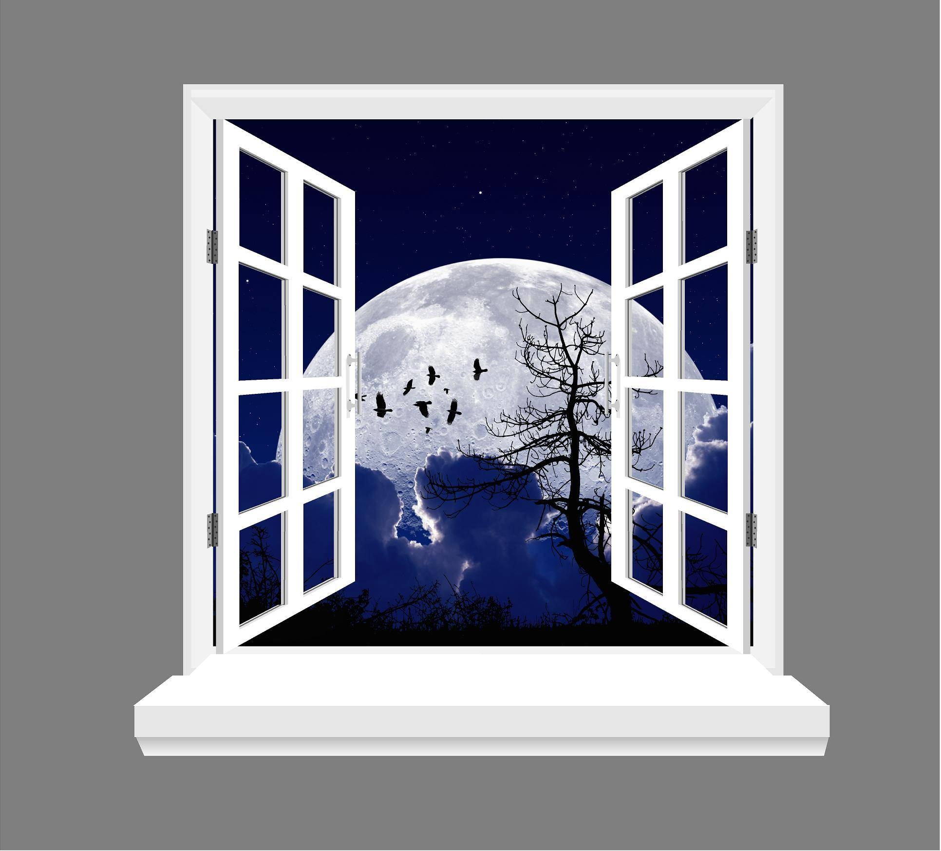 Moon And Birds 3d Window View Wall Art Sticker In 2018 3d Wall Art Window (View 8 of 20)