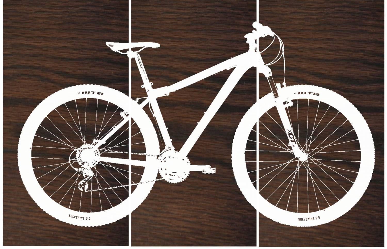 Mountain Bike Wall Art / Bicycle Screen Print / Wood Painting For 2018 Bike Wall Art (View 11 of 20)