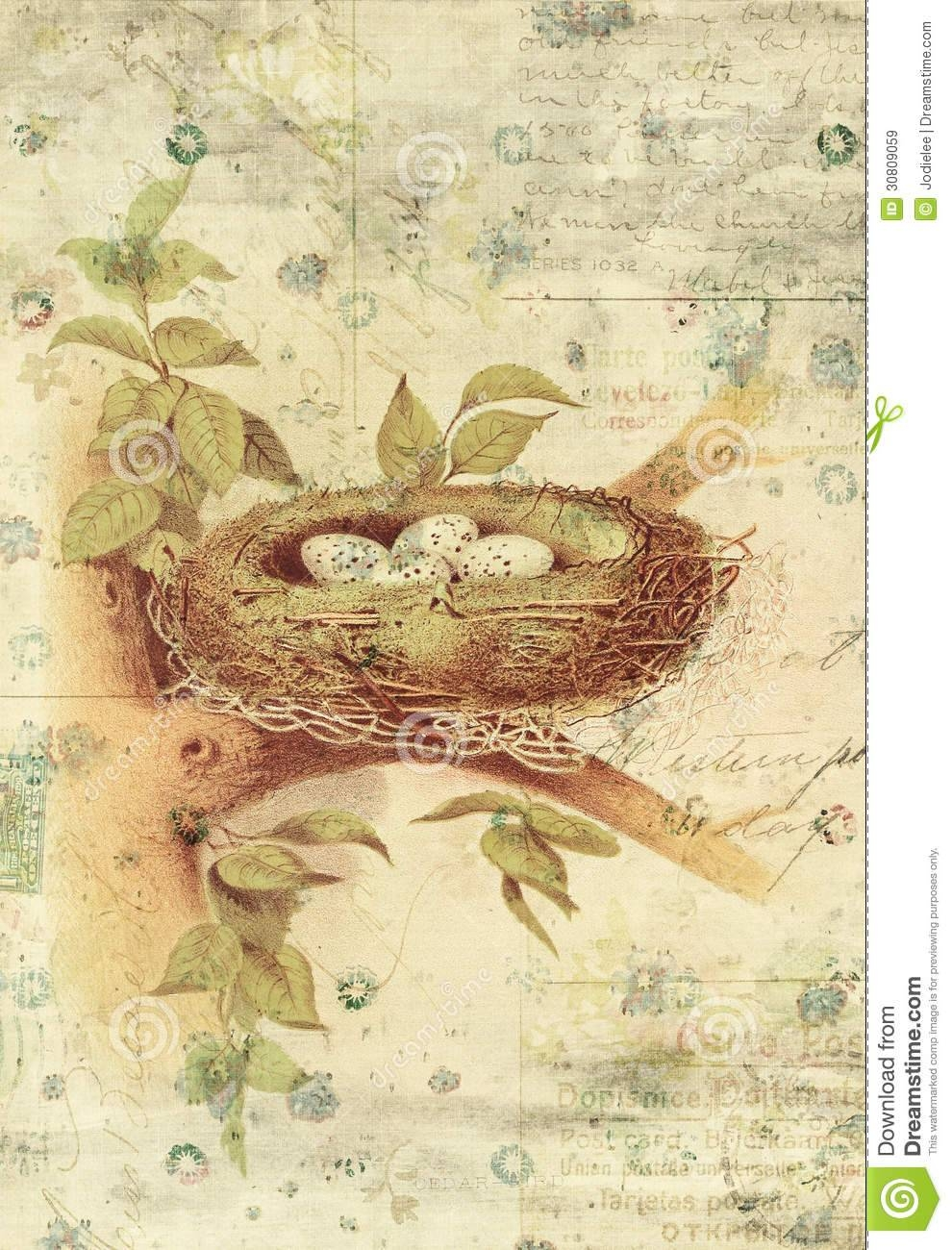 Nest And Bird Eggs Botanical Vintage Style Wall Art With Textured Intended For Most Recently Released Vintage Style Wall Art (View 12 of 20)