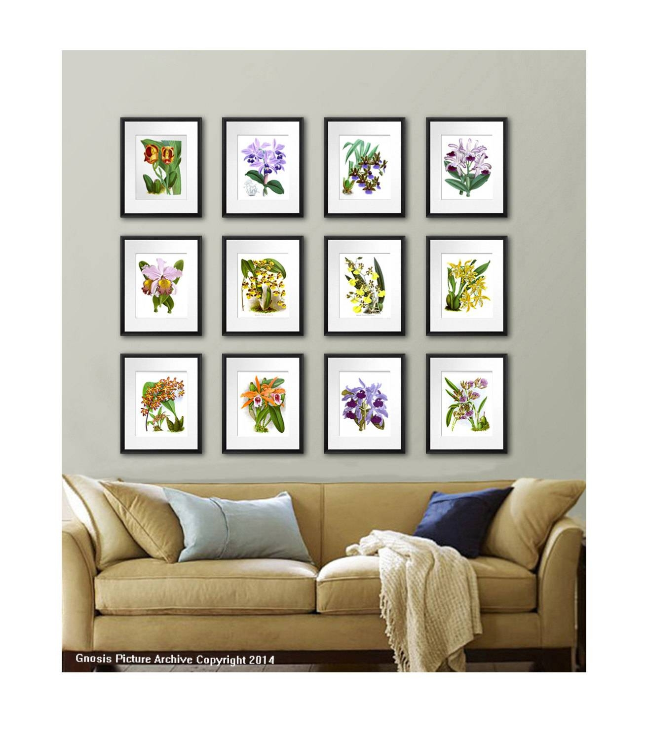 Orchid Plant Set Of 12 Botanical Prints Tropical Decor Pertaining To Current Wall Art Print Sets (Gallery 3 of 20)