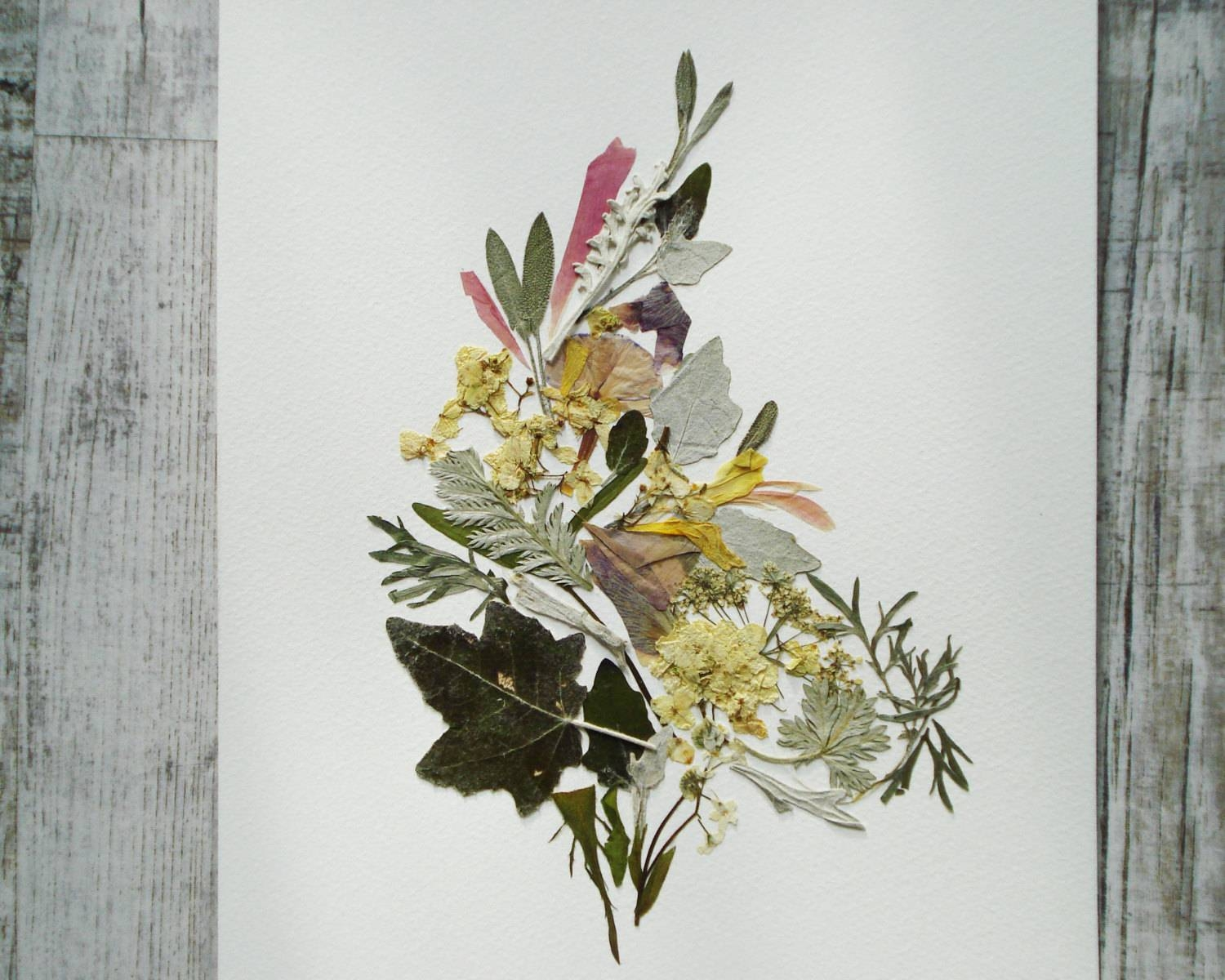 Original Pressed Flowers Artwork Herbarium Art Botanical Art Regarding Most Up To Date Floral & Plant Wall Art (View 21 of 25)