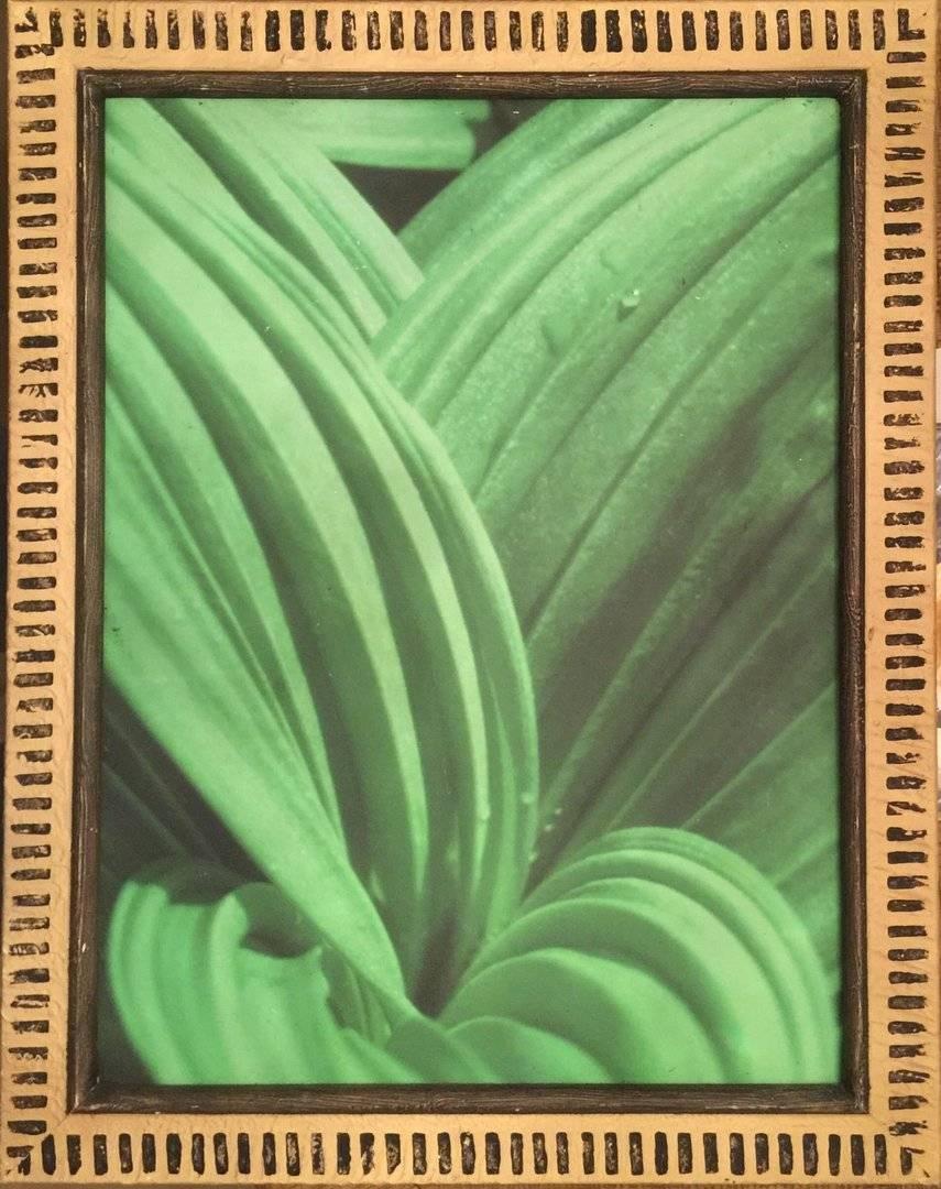 Polynesian Resort Fern Leaf Wall Art Regarding Current Polynesian Wall Art (View 19 of 20)
