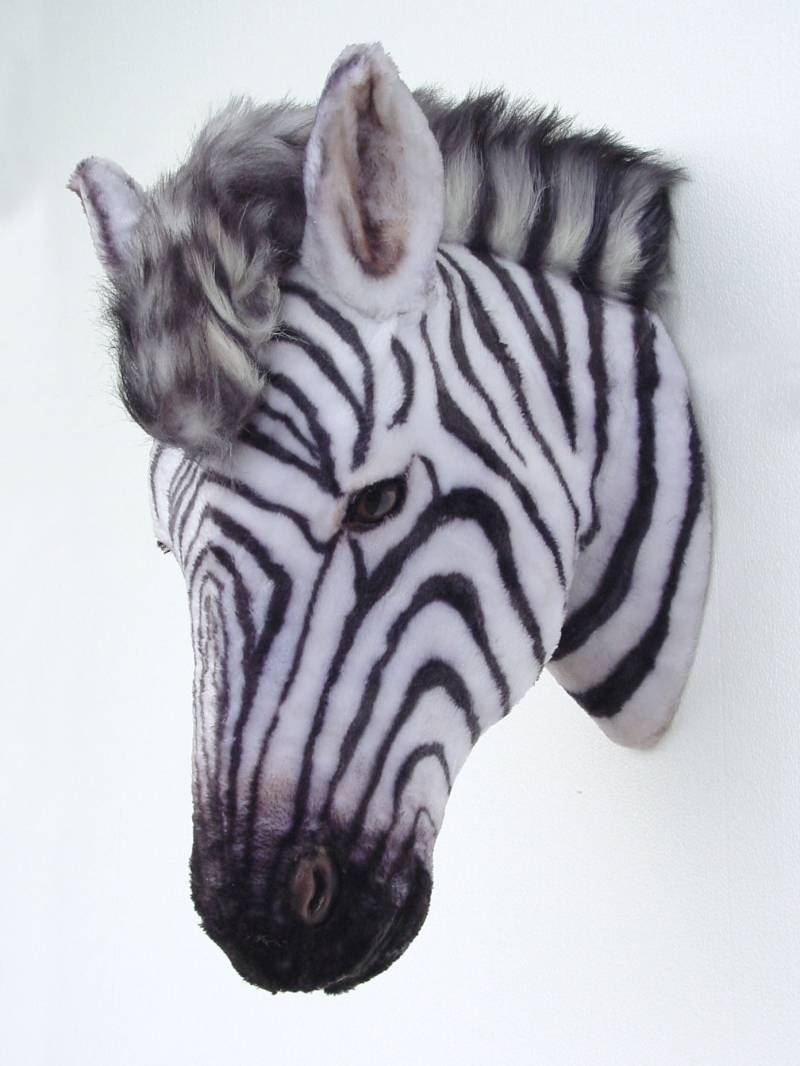 Pop Art Decoration – Animals – Mounted Heads – Zebra Head Mount Intended For 2018 Zebra 3d Wall Art (View 2 of 20)