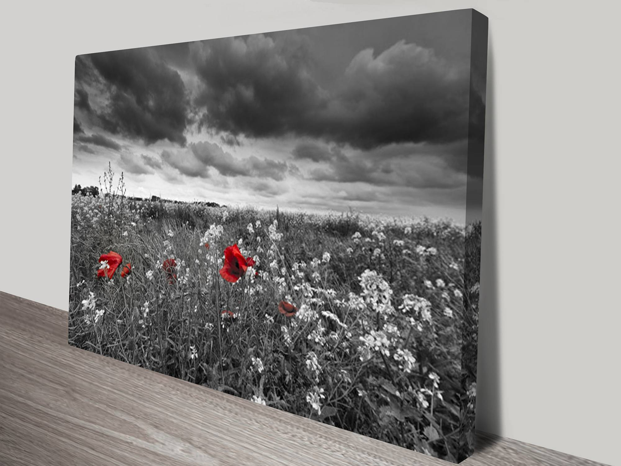 Red Poppy Field Black And White Canvas Print Regarding Newest Red Poppy Canvas Wall Art (View 5 of 20)