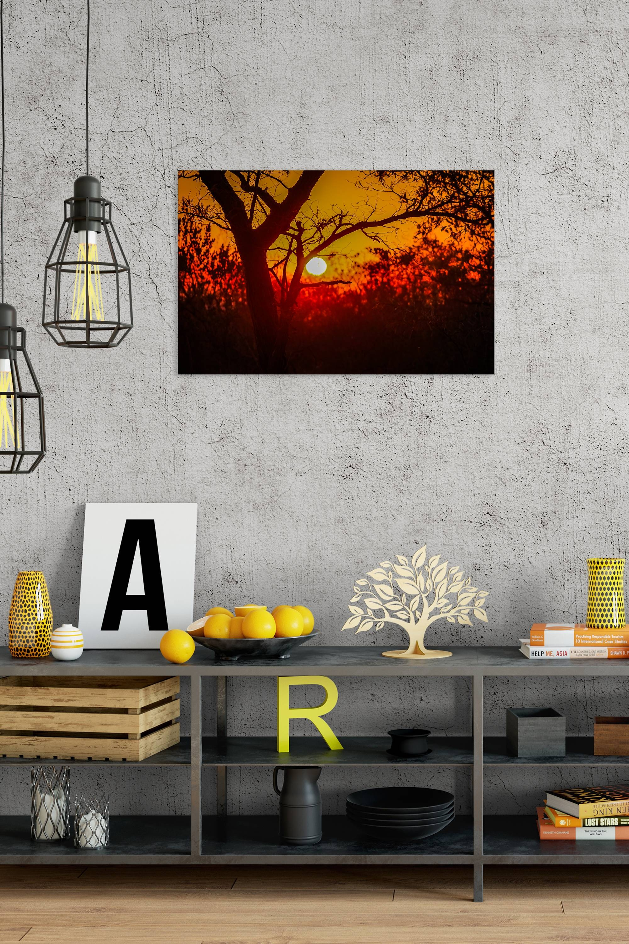 Savannah Sunrise – Rogue Aurora Photography In Best And Newest Photography Wall Art (View 14 of 25)