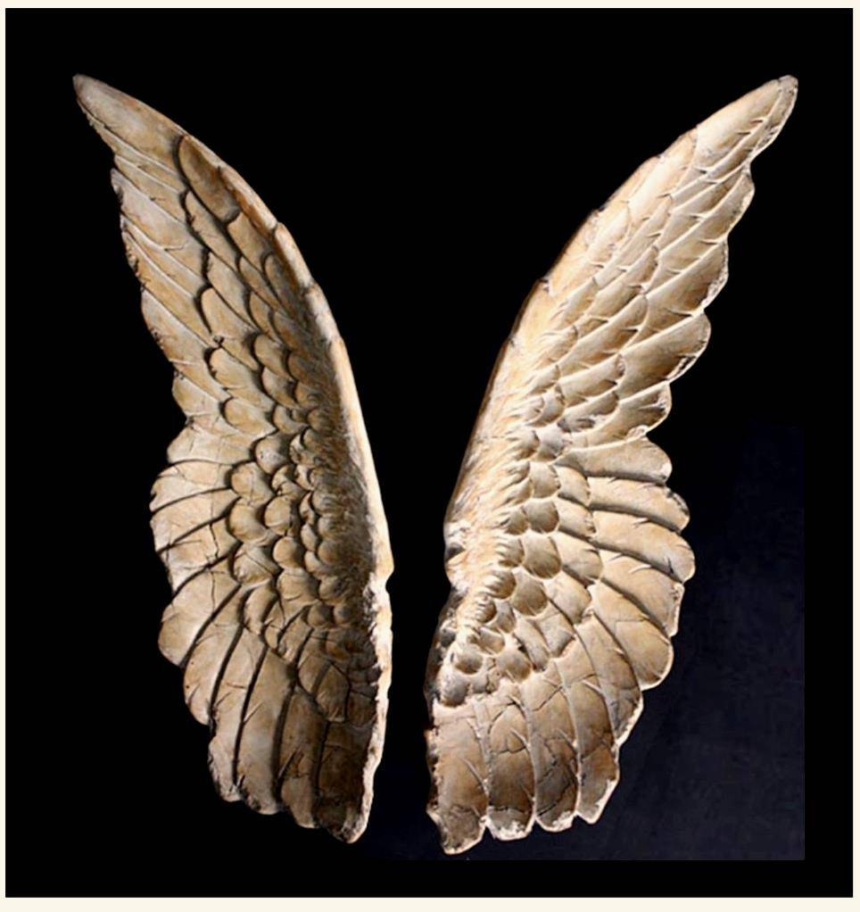 Sculpture For Sale | Ancient Angel Wings Wall Art Replica – Set Of Inside Most Popular Angel Wings Sculpture Plaque Wall Art (View 7 of 20)