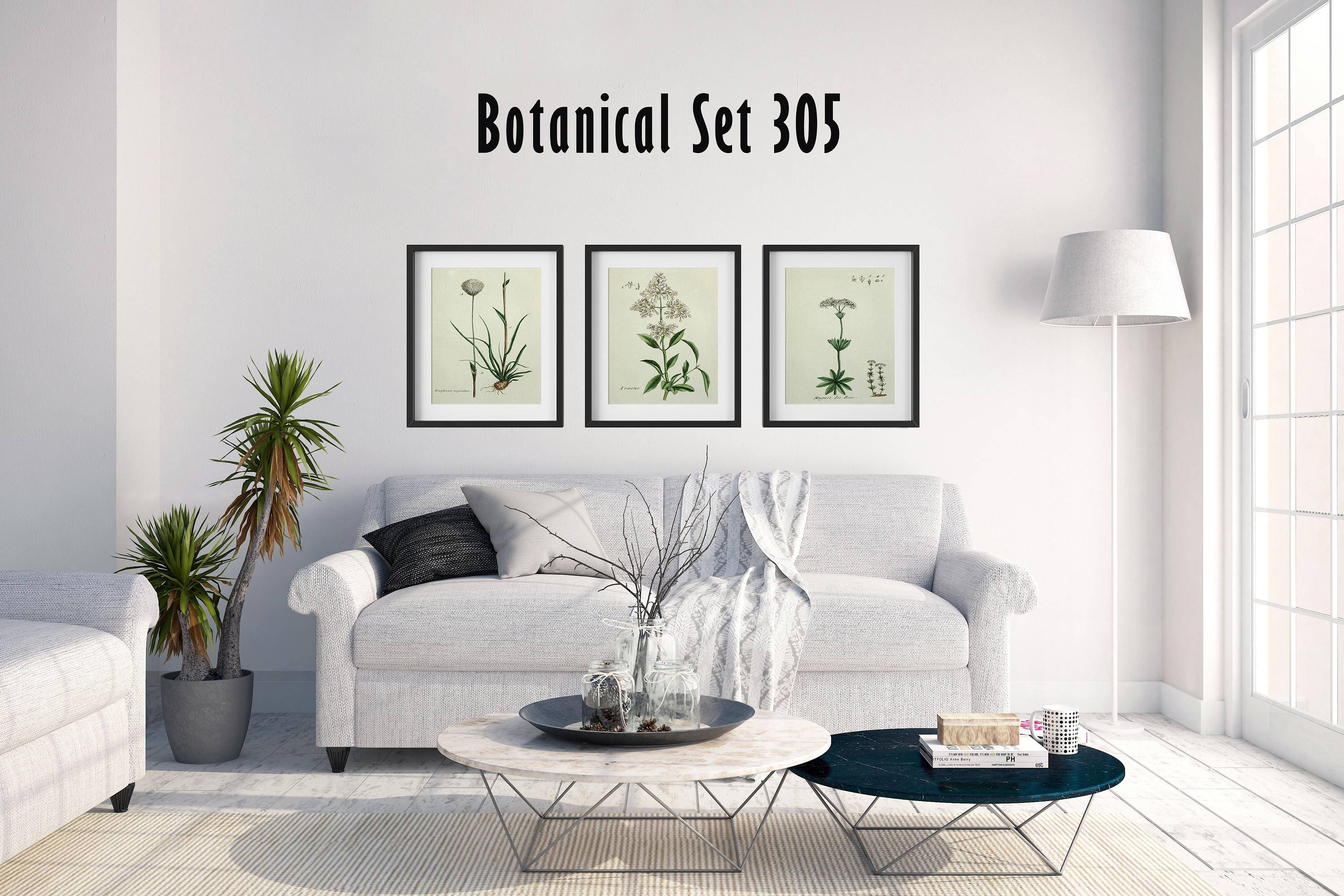 Set Of 3 Botanical Prints, White Floral Prints, Cottage Chic Decor With Newest Country French Wall Art (View 24 of 30)