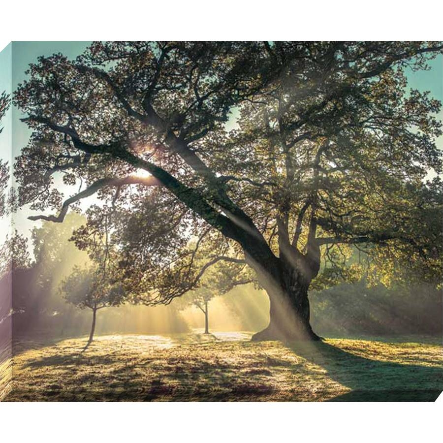 Shop 37 In W X 30 In H Canvas Landscapes Wall Art At Lowes Intended For Newest Canvas Landscape Wall Art (View 17 of 20)