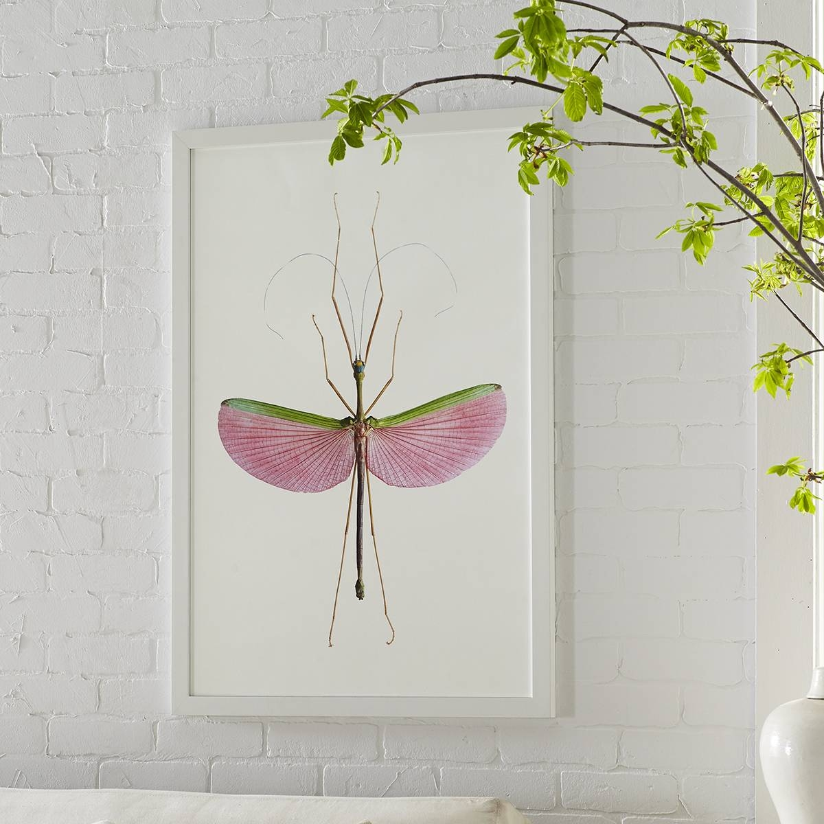 Stick Insect Wall Art – Watermelon | Wisteria Intended For Recent Insect Wall Art (View 22 of 30)