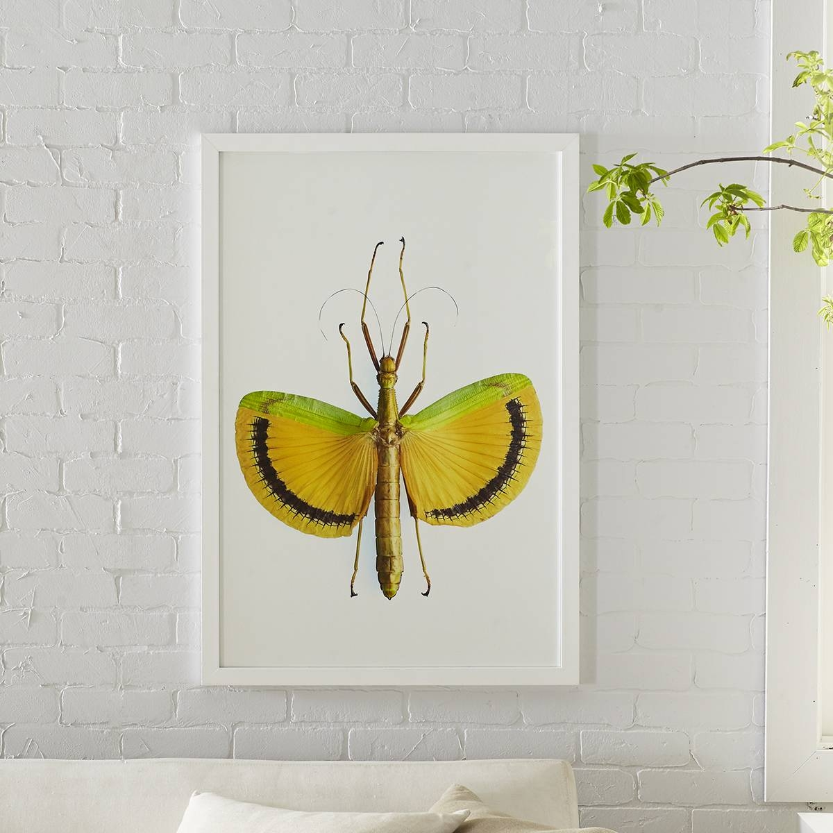 Stick Insect Wall Art – Yellow Umbrella | Wisteria Intended For Latest Insect Wall Art (View 23 of 30)