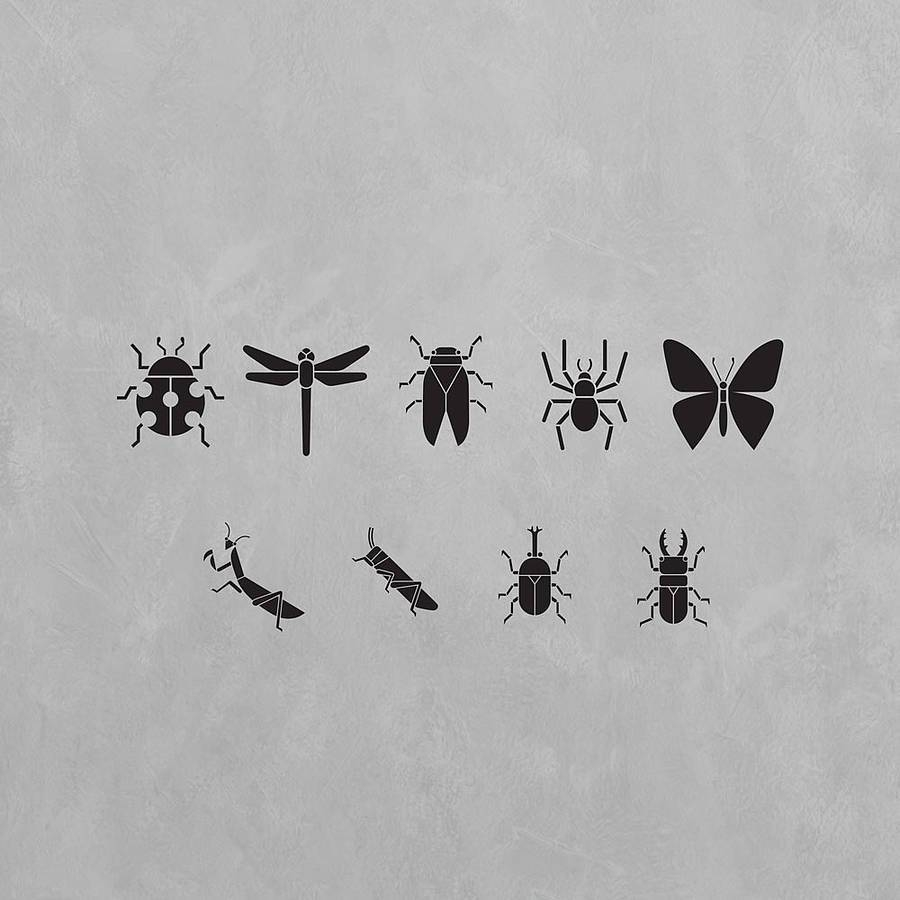 Stylised Insects Wall Art Decal Pack For Kidsvinyl Revolution Regarding Latest Insect Wall Art (View 25 of 30)