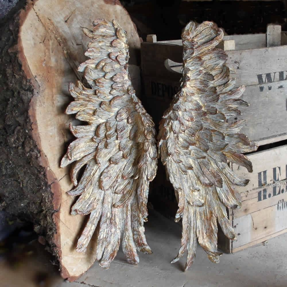 Traditional Angel Wings Wall Decor : Garnish With Angel Wings Wall With Best And Newest Angel Wings Wall Art (View 14 of 20)