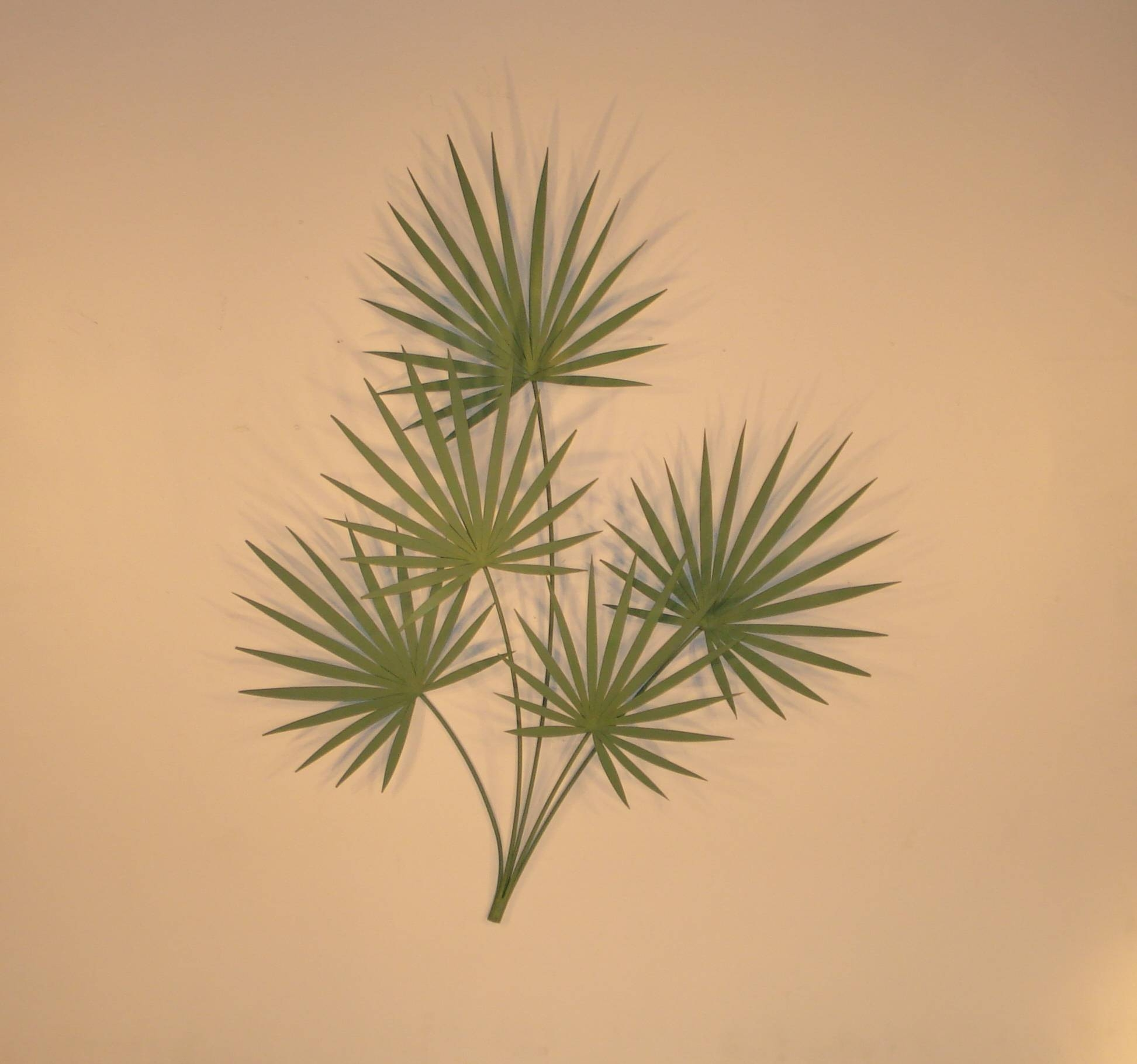 Tropical Metal Art, Wall Sculptures And Decor | Gurtan Designs Intended For Current Palm Leaf Wall Decor (View 19 of 25)