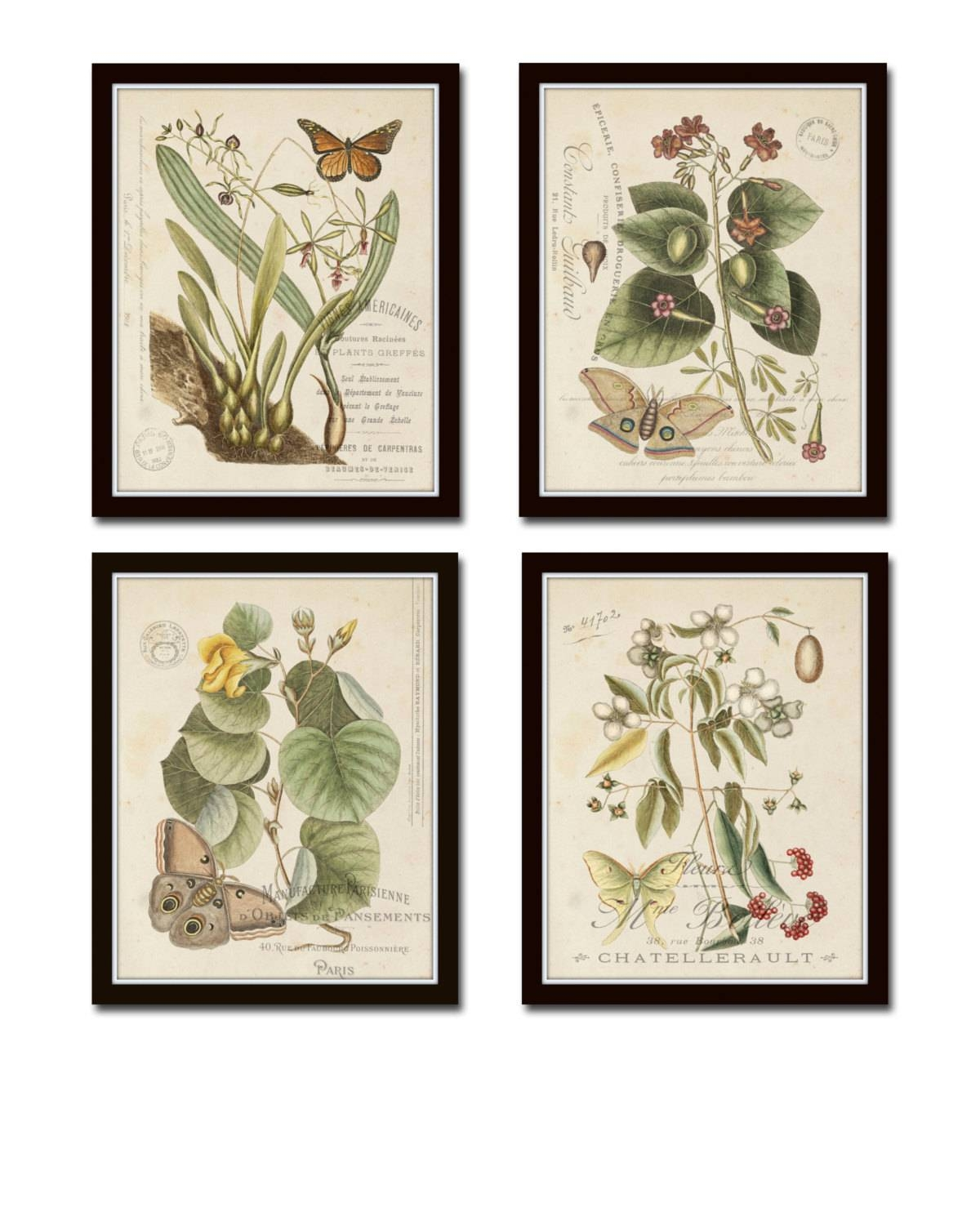 Vintage Butterfly And Botanical Print Set No.1 Giclee Art Within 2018 Botanical Prints Etsy (Gallery 1 of 20)