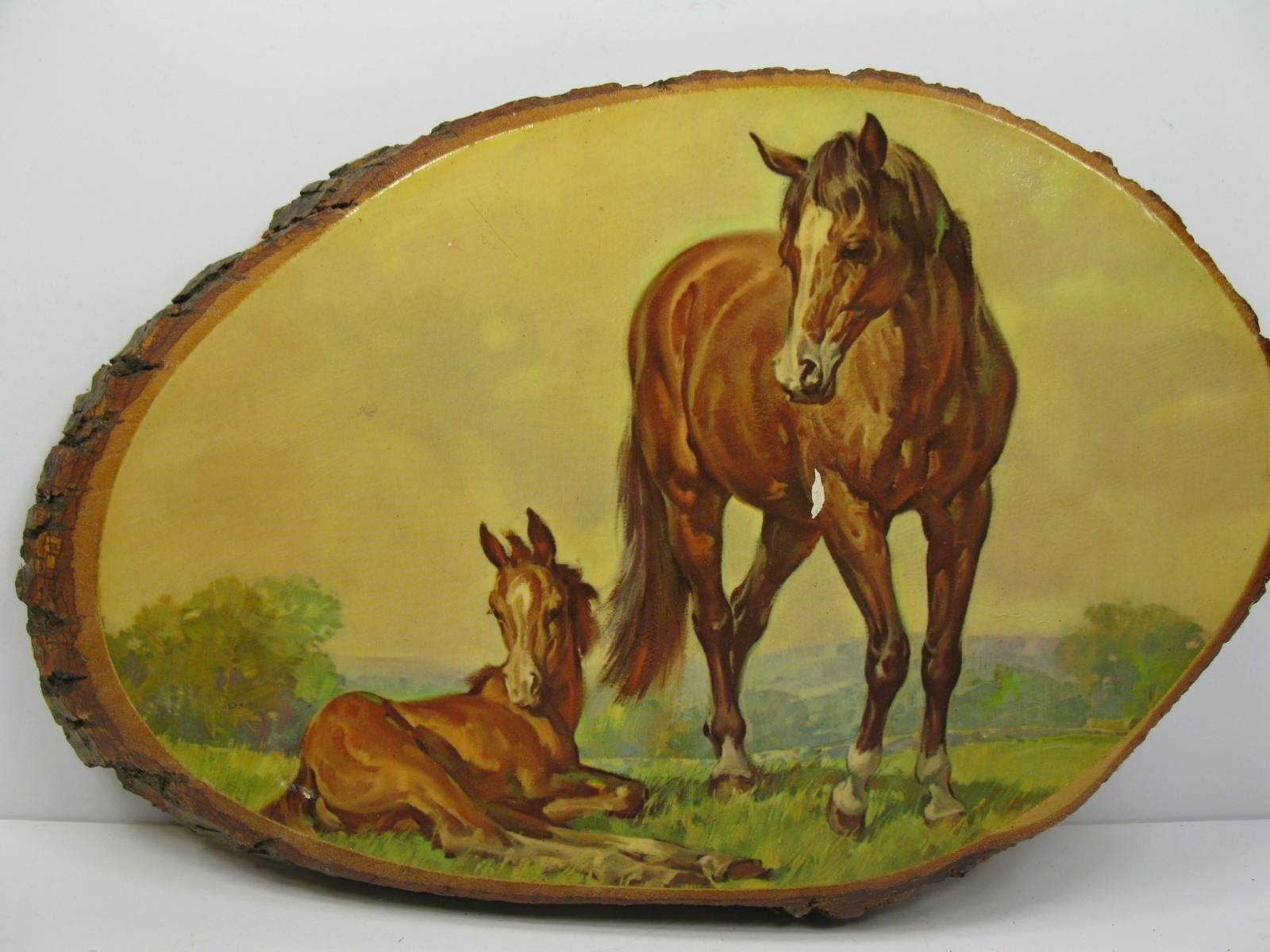 Vintage Horse Colt In Field Wood Slab Decoupage Wall Art Plaque Inside Current Decoupage Wall Art (View 26 of 30)