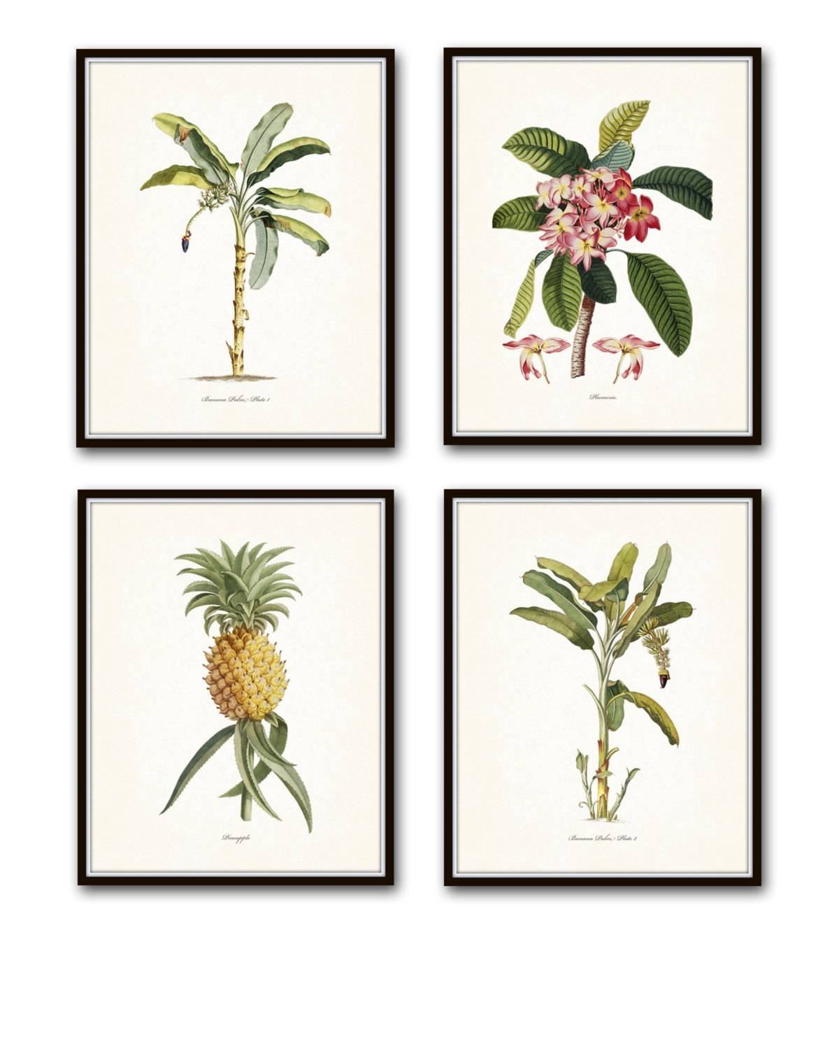 Vintage Tropical Botanical Print Set No. 1 Giclee Prints Regarding Current Botanical Prints Etsy (Gallery 18 of 20)