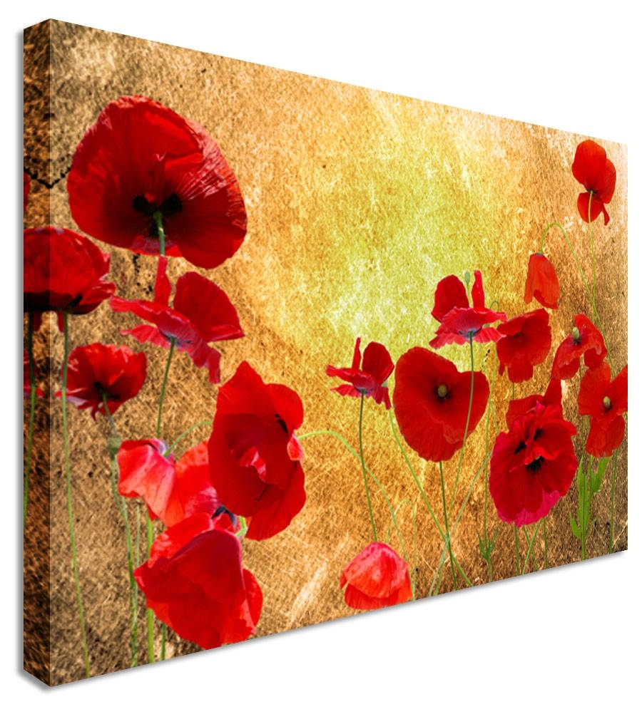 Wall Art: Adorable Pictures Poppy Canvas Wall Art Poppy Pictures Pertaining To Most Recent Red Poppy Canvas Wall Art (View 2 of 20)