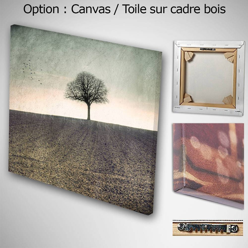 Wall Art Canvas, Photo Canvas Prints, Tree Decor, Country Decor Pertaining To Most Popular French Country Wall Art Prints (View 17 of 20)