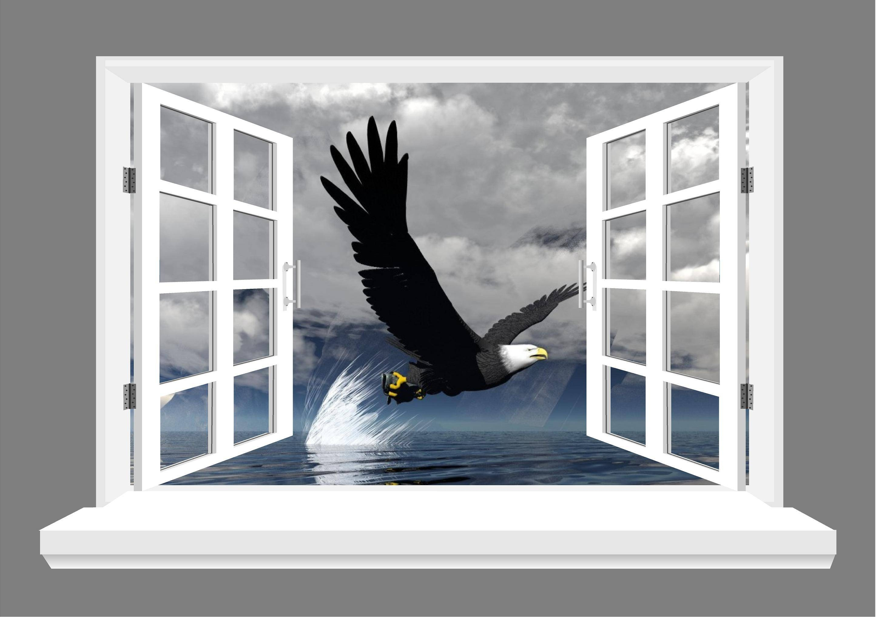 Wall Art Design Ideas: Eagly Flying 3d Wall Art Bird Windows For Best And Newest 3d Wall Art Window (View 4 of 20)